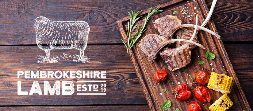 Pembrokeshire-Lamb-Sustainable-Farming